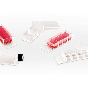 Клетъчни и тъканни култури